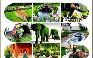 Участок перед баней: как обустроить красивый двор